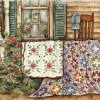 A QUILT FROM CREATION