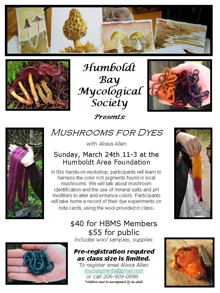 02022012 HBMS Dye Workshop flyer