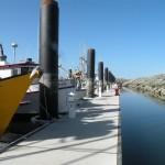 Dock pic 4