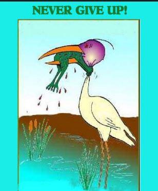 frog strangling crane